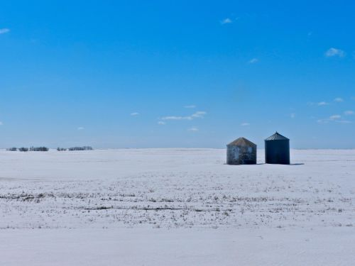 Snowy Sask