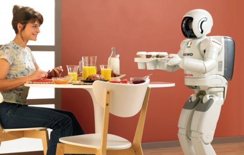 Robot in home