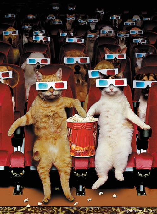 Pets-At-The-Movies