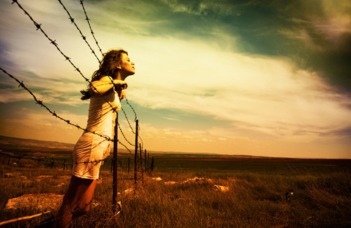 Barbed wire freedom