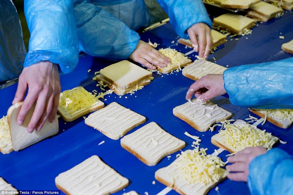 sandwich assembly line