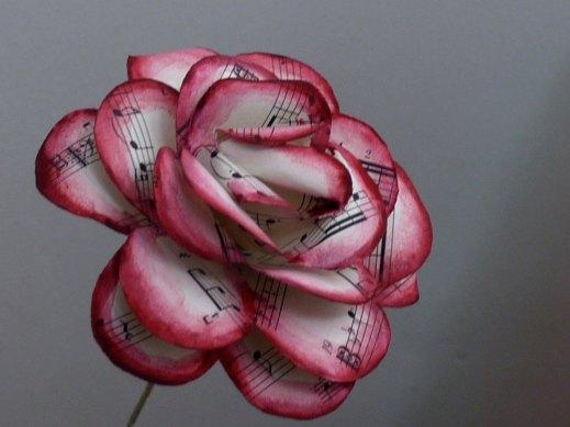 paper-rose