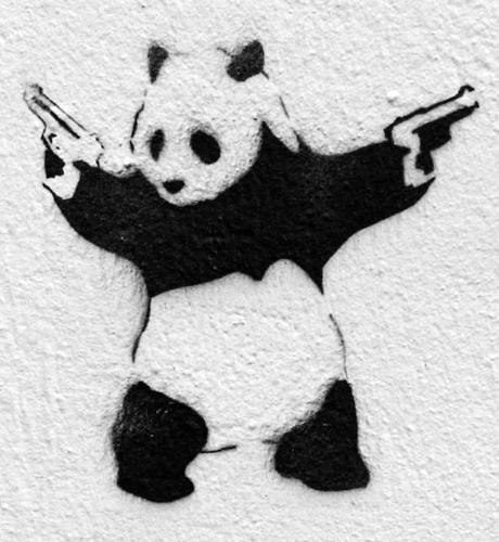 panda shoots.jpg
