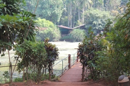 Bridge across lagoon to spice plantation