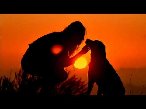 woan with dog at sunset
