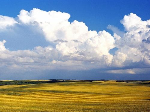 prairie 2.jpg
