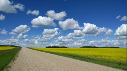 Sask clouds.jpg