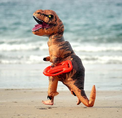 T Rex at beach.jpg
