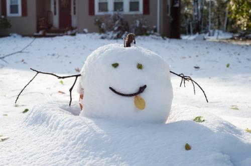 snowy pumpkin.jpg