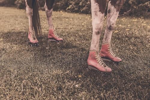 cow feet.jpg