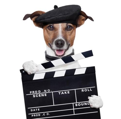 movie take.jpg