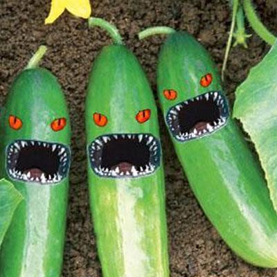 angry vegeatbles
