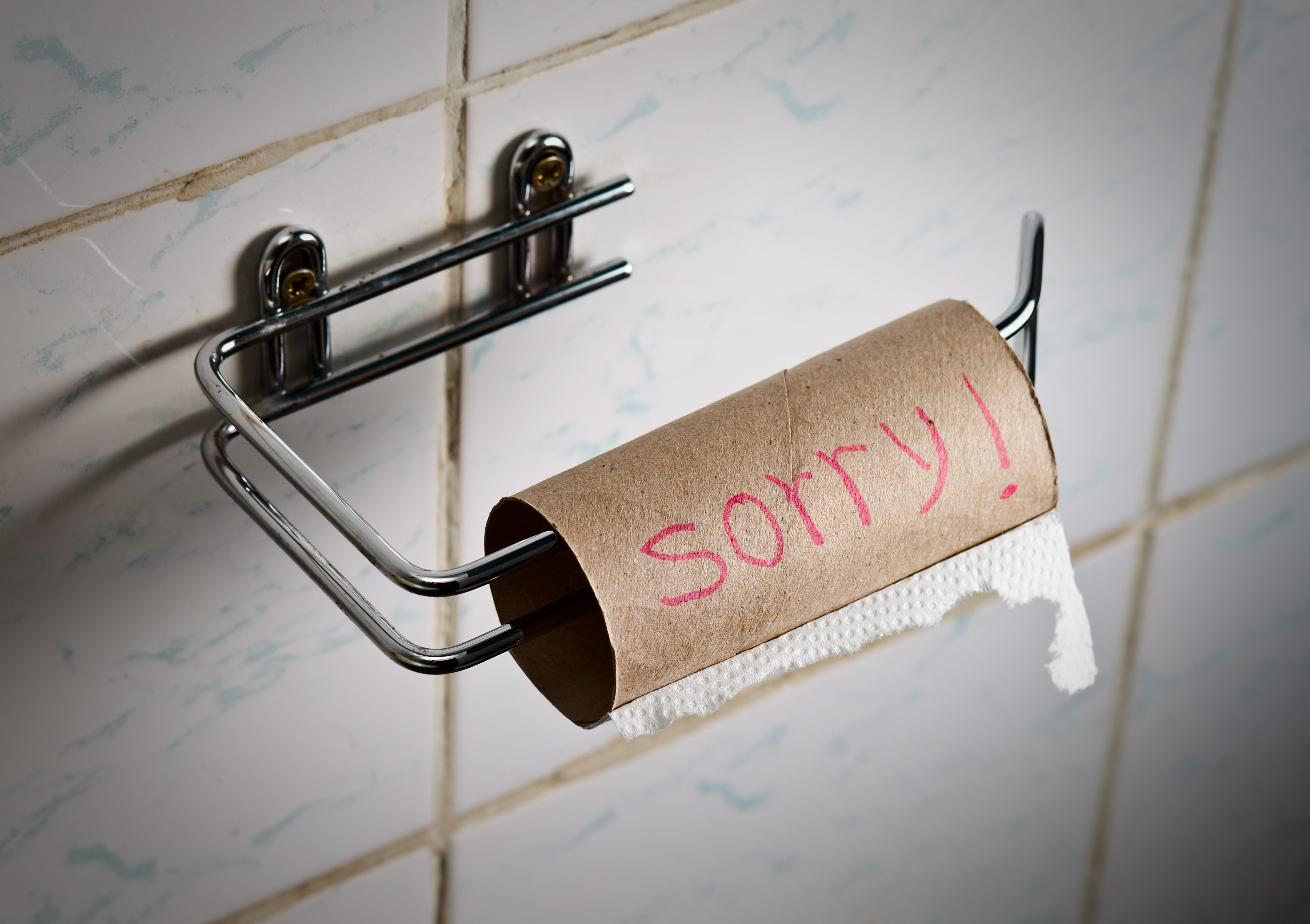toilet paper out