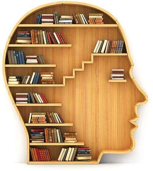 wisdom bookshelf 2